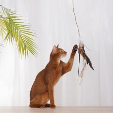 雞毛逗貓棒帶球(40公分)(貓玩具)