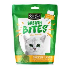 薄荷潔牙餅60克 雞肉口味(貓零食)