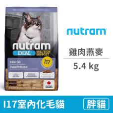 I17室內化毛貓 雞肉燕麥5.4公斤 (貓飼料)