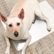 Marukan涼感高純度鋁製涼墊 (2XL) 夏天貓狗寵物降溫涼感涼墊睡墊鋁墊寵物用品推薦