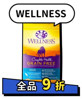 WELLNESS 9折
