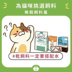 【飲食小知識 / 貓咪】為貓挑選飼料:無