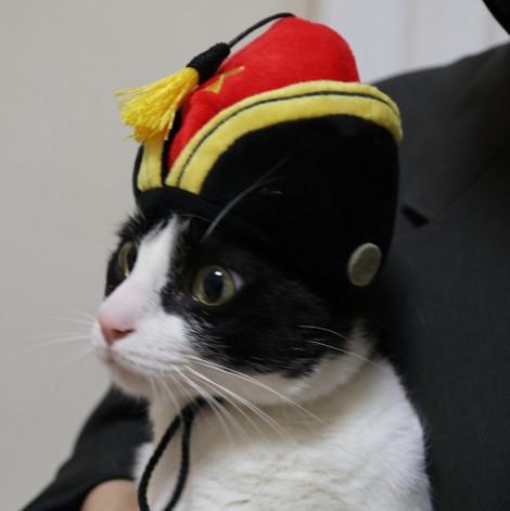 名畫寵物帽 吹笛少年帽(頭圍31公分),CSS_新品,bd_新品_20210915